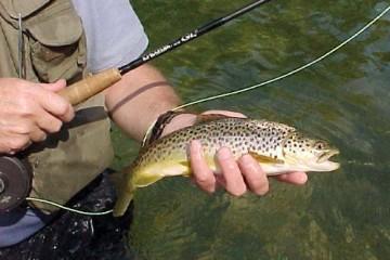 Fishing Derby 4/26